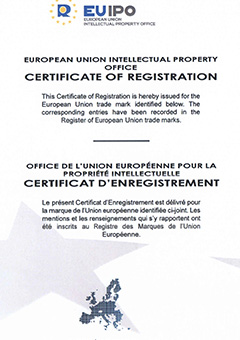 P08 EU intellectual property