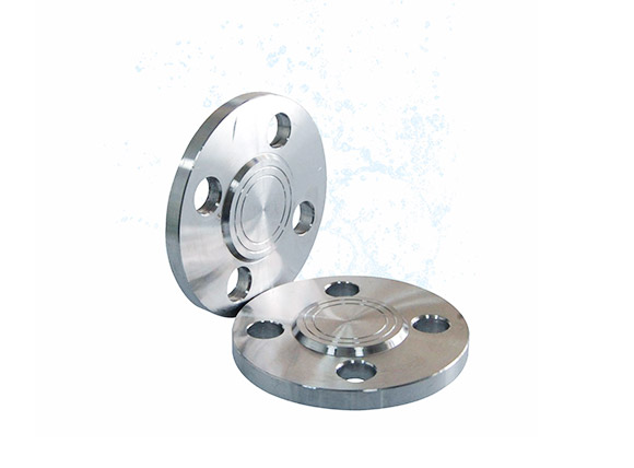Stainless Steel Valve Flanges and Accessories 1